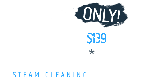 $109 Only 4 Rooms Steam Cleaning